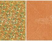 Graphic 45, Steampunk Debutante, Garden Gears, 12 x 12 Single Sheet, Vintage Retired