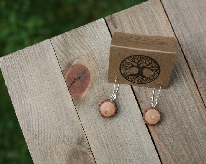 Tiny Wood Earrings in Sassafras
