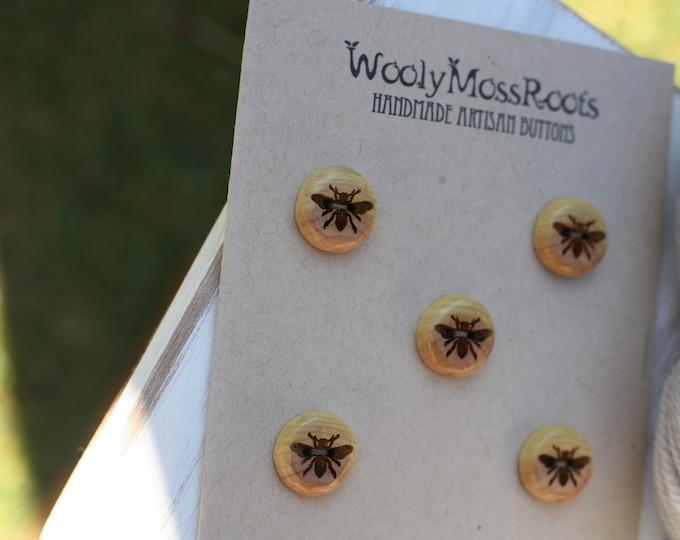 5 Honeybee Buttons in Oregon Cascara