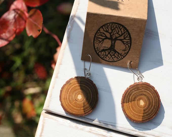 Sassafras Wood Earrings