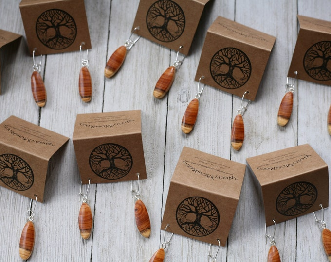 Small, Colorful Wood Earrings in Oregon Yew
