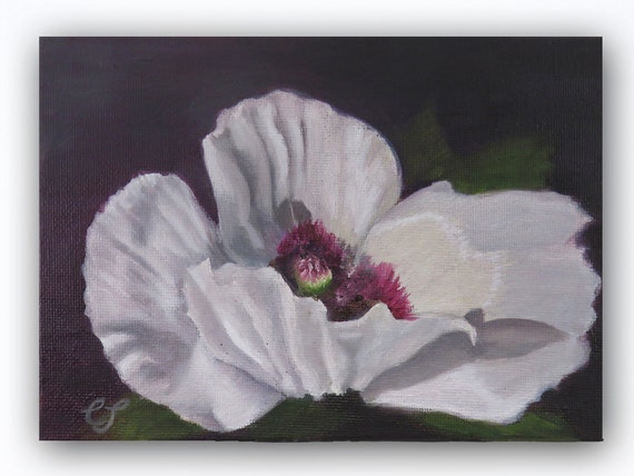 Art PRINT of Original Oil Painting of a White Poppy Flower on Black for Home or Office Decor