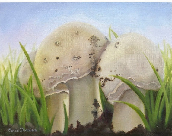 Wall Art Original Oil Painting of Three Toadstools for Nursery, Home or Office Decor