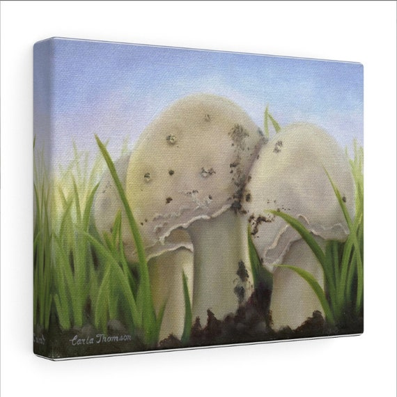 Canvas PRINT, Art Prints of Original Painting, Mushroom Toadstools for Nursery Decor, Home Decor, Farmhouse Decor, Office Decor