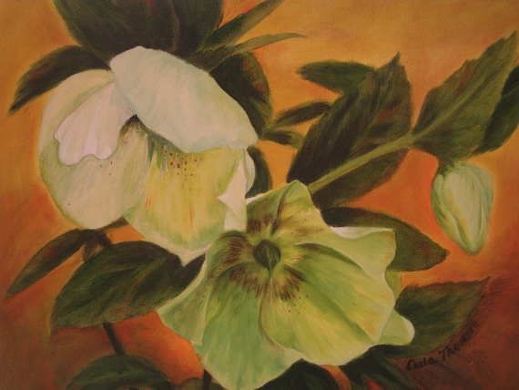 "Lenten Rose I  12x16"" Oil on Canvas"