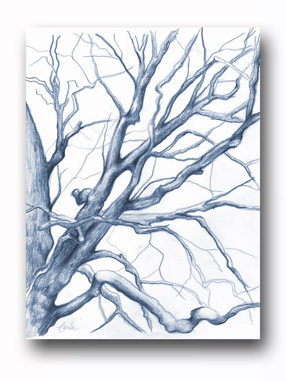 Navy Blue Illustration Print, Charcoal Drawing of Branches, Winter Tree Sketch, Botanical Art, Tree of Life Wall Art