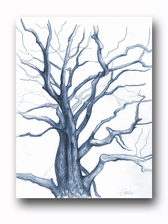 Navy Blue Tree of Life Wall Art Print , Branches Charcoal Drawing, Black White Botanical Illustration, Plant Sketch