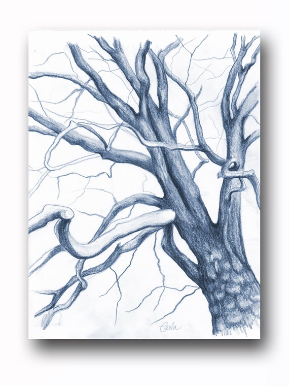 Navy Blue Tree Branches Charcoal Drawing, Botanical Wall Art, Black White Illustration, Tree of Life Art Sketch