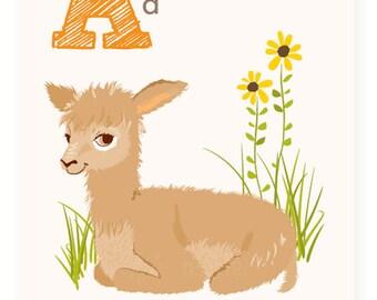 ABC wall art, ABC card, A is for Alpaca,  alphabet flash cards, nursery wall decor for kids