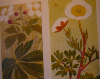 Botanical Print - Renoncule - Flower Lithographs - vibrant color prints - double sided - ready to frame - Alpine flowers - glacial