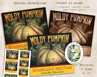 Halloween Pumpkin Potion Bottle Label, Party Decoration Clip Art, Digital Download