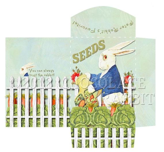 Printable Seed Packet Vintage Peter Rabbit Gift Envelope