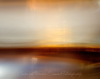 Regal Red.  Fine Art Photograph.  Giclee