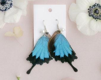 PAPILIO ULYSSES Butterfly Earrings, Sapphire, Pearl Earrings, Gold Earrings, Dangle Earrings, Wing Earrings, Butterflies, Garden Wedding