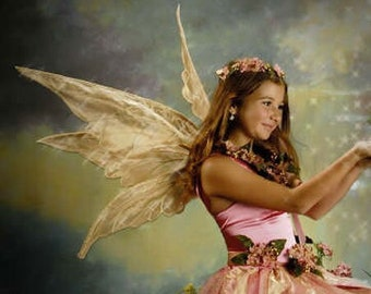 Thalia large Enchanted adult costume fairy wings, worn by Bella Thorne