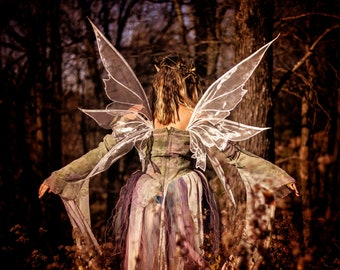 RTS Amalthea large Enchanted Adult costume fairy wings Champagne