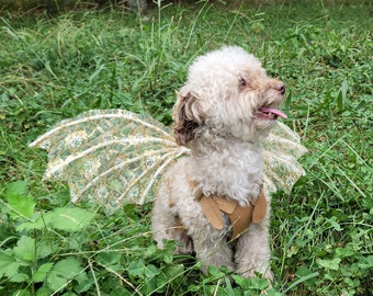 """Lace Fairy Pet Wings - photo prop -  """"The Enchanted Buster Fairy"""""""