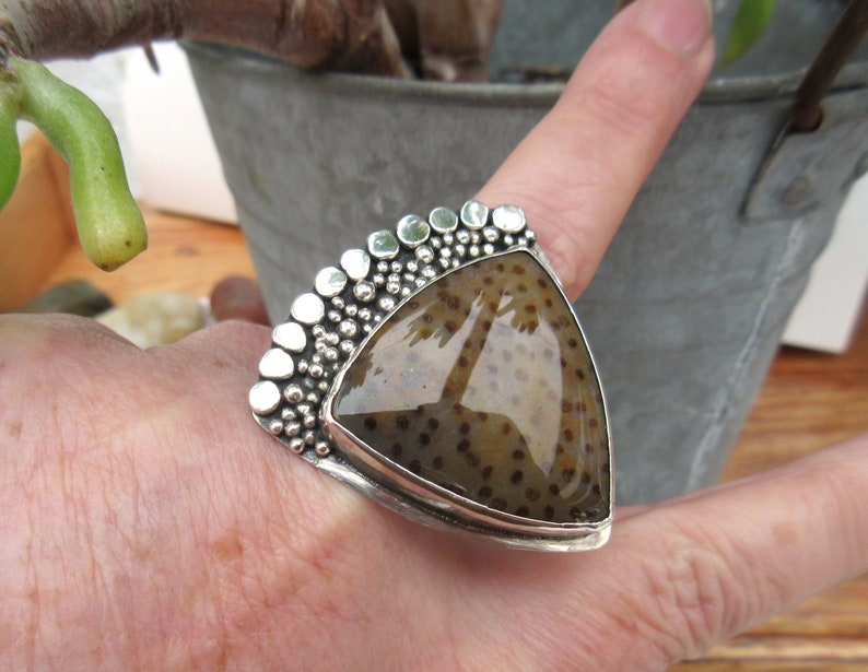 A 925 solid silver ring with a cabochon Petrified palm wood for the vintage side ....