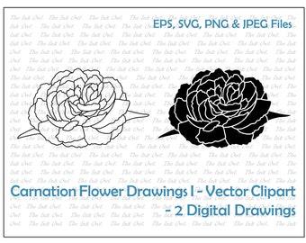 Carnation Flower Drawing Vector Clipart / Outline & Stamp Illustrations / Floral petals / PNG, JPG, SVG, Eps