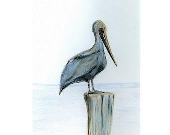 Pelican  Note Cards , Original Art Note Cards
