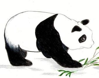 Panda Note cards , Original Art Note Cards , Original Panda Print
