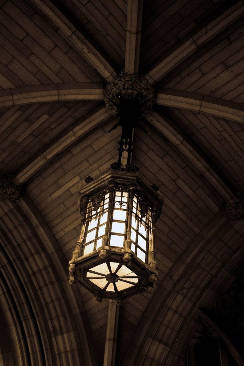 Photograph Neutral Sepia Gothic Hanging Pendant Light Lantern image 0