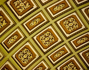 Photograph Abstract Chocolate Brown and Lime Green Architectural Geometric Ceiling of Montreal Cathedral Canada Travel Art Print Home Decor