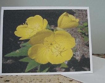 Yellow Flower Note Cards ~ N50