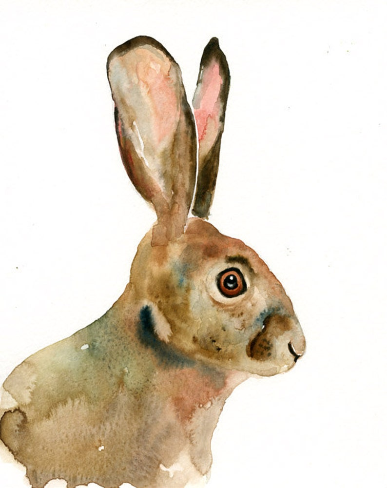 Jackrabbit watercolor painting