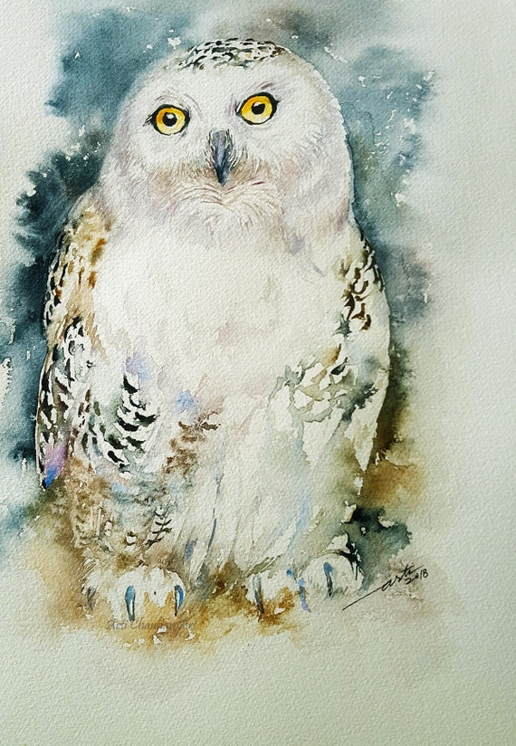 Snowy White Owl Original Watercolor Painting Wall Art