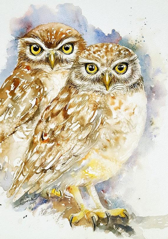 Owl Original Watercolor Painting Wall Art animal and Birds