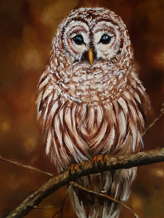 Original Oil Painting Animal Art  Owl Portrait