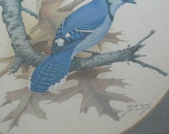 Beautiful BLUE BIRD Lithoraph Signed Artist John W Taylor