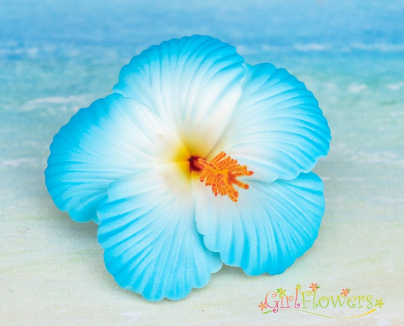Blue Hibiscus Hair Clip 2 34 Inch Hair Flower Beach Etsy