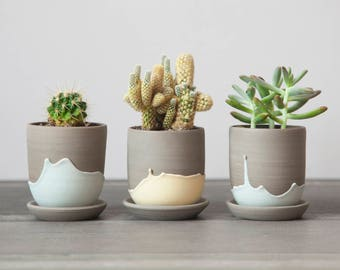 Cactus pot - ceramic planter - small plant pot - plant pot cover - stoneware plant pot - plant holder - succulent - plant hanger
