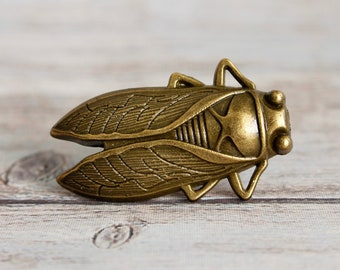 Insect drawer knobs in Brass - Cicada Cabinet Knobs - Insect Dresser Knobs in Brass - Entomology gift - Nature Decor - Bug Decor
