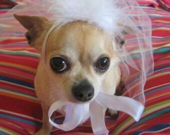 Wedding Pet BRIDAL veil