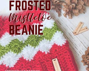 Christmas Crochet Pattern, Frosted Mistletoe Pom Pom Beanie, PDF INSTANT DOWNLOAD, Women's winter hat, Teens winter hat, tutorial