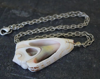 Luhuanus Shell Slice Pendant Antique Silver Paperclip Chain Necklace, Shell Pendant Necklace, Paperclip Chain, Shell Jewelry