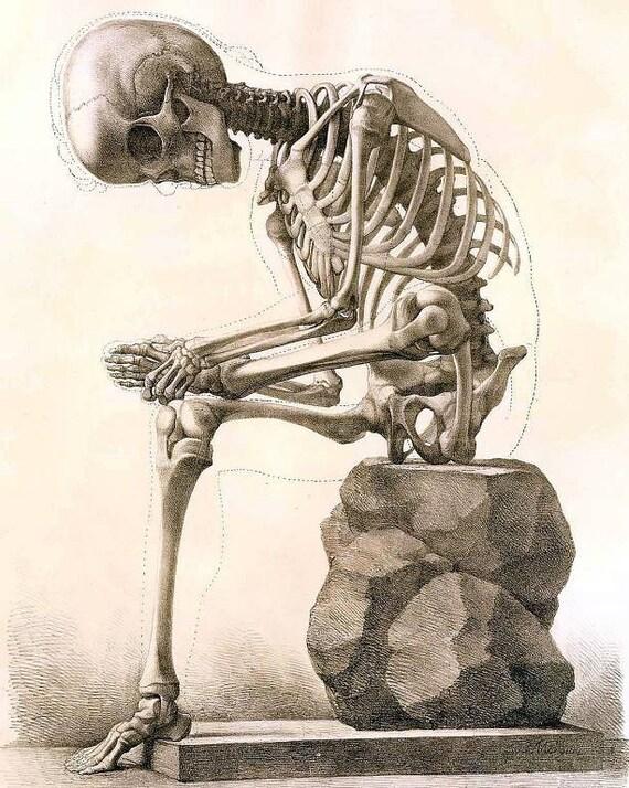 Sofortiger Download sitzen Skelett Körper Knochen Struktur | Etsy