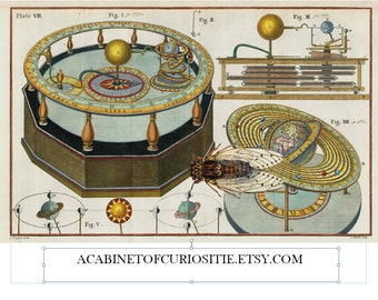 Cicada and Vintage Celestial Map  Collage Sheet  8 1/2 x 11 Journal Adds PDF Digital Instant Download