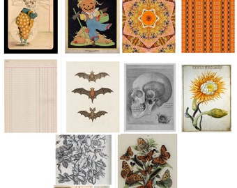 Halloween Primer 1 Digital Download Journal Pages Orange Black Pumpkin Skellie PDF