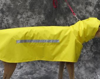 Greyhound Raincoat, yellow, medium, female
