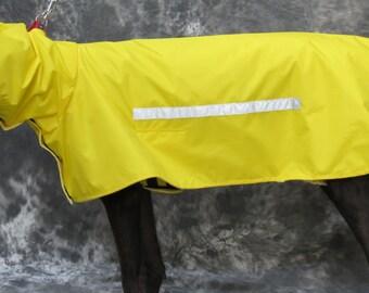 Greyhound Raincoat, yellow, large