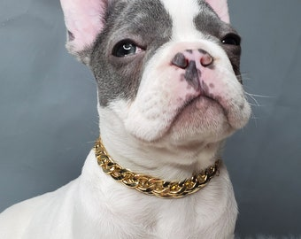 Cuban Link /Supper cute dog neck chain gold color/Jewelry  for pet / Dog collar/