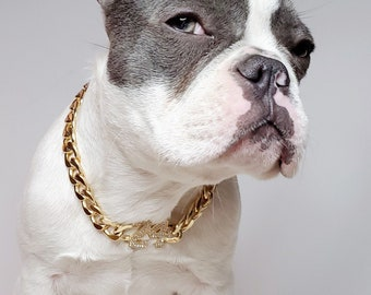 Supper cute dog neck chain gold color/ Jewelry for pet /Jewelry collar for  Frenchie/Cat neck jewelry collar /
