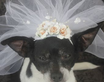 Cute bridle   veil  with white flowers