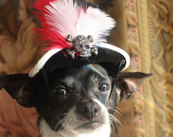 Pirate hat for dog or cat black color with white black and red feather/Halloween dog costume/