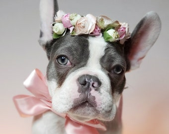 Set flower crown and neck bow / Garden Flowers Pet wedding Set /Flower Crown/ Dogs Floral Headband /Cat Flower Crown Outfits/