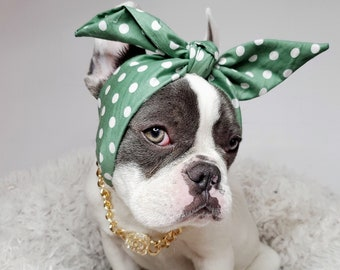 Headband  for dog or cat /headband for dogs/Pet gift/
